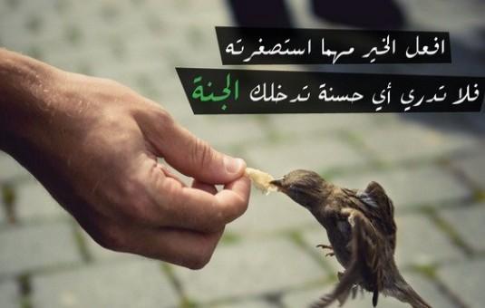 Berbuat Baik Tidak Melihat Agama-IslamRamah.co